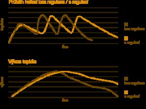 Srovnání neregulované a regulované křivky hoření